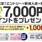 楽天カード☆新規入会&エントリー&利用&スーパーSALE期間中に1,000円以上お買物で、もれなく最大8,000円相当のポイントプレゼントキャンペーン実施中です!