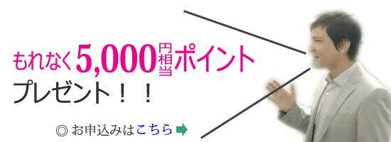 楽天カード、新規入会+利用で5,000ポイントプレゼントキャンペーン専用お申込バナー