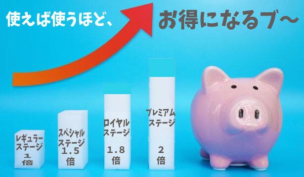 利用金額に応じてポイントがザクザクたまるステージ制プログラム